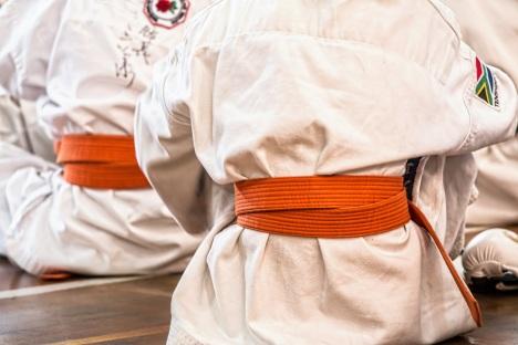 karate-1665606